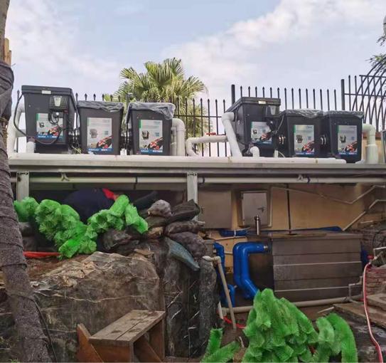 别墅景观鱼池过滤系统